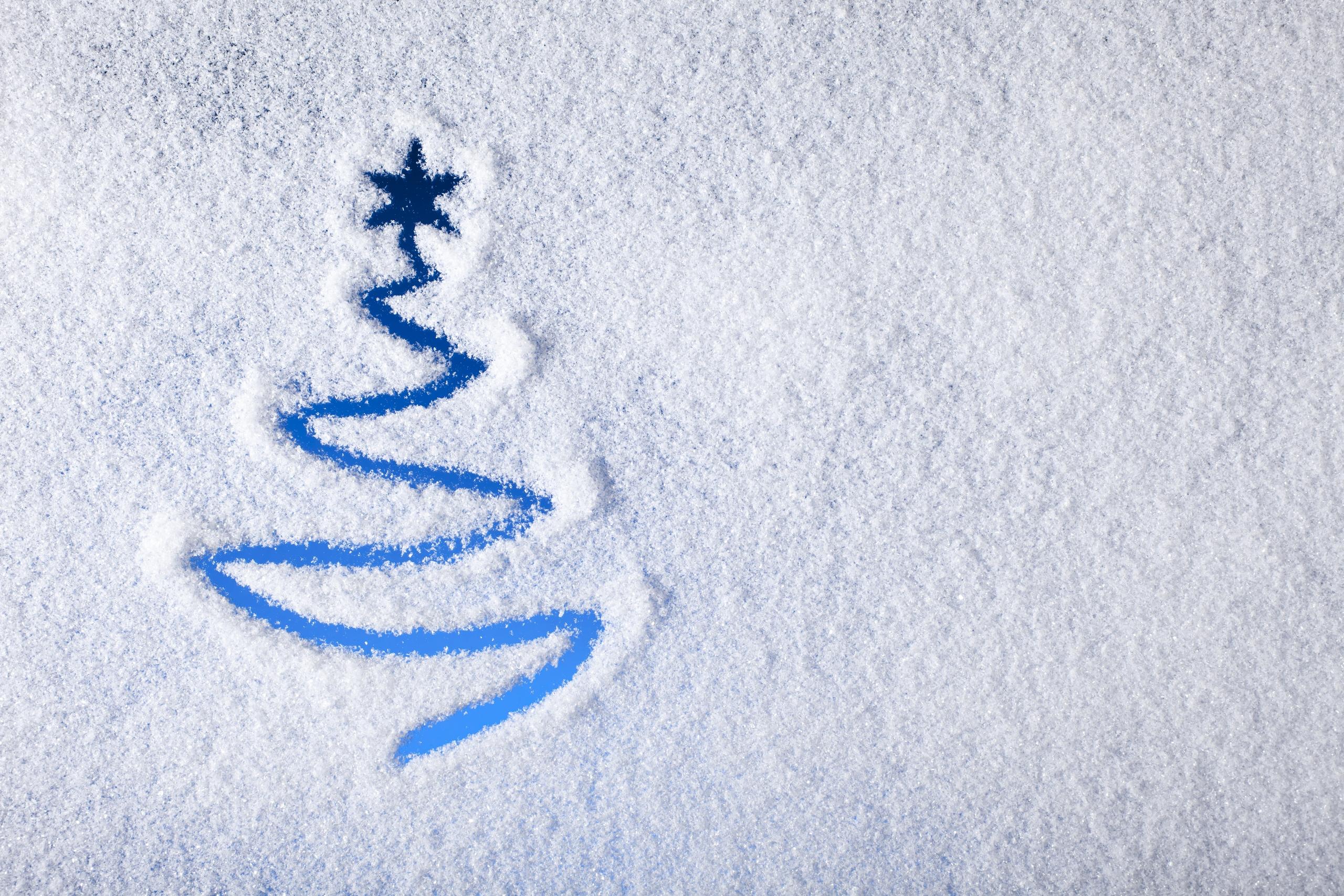 Обои нарисованная, елка, голубой, неон