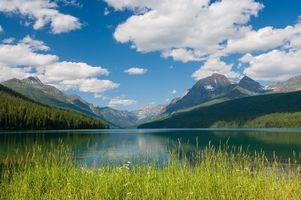 Бесплатные фото небо,голубое,облака,горы,деревья,лес,трава