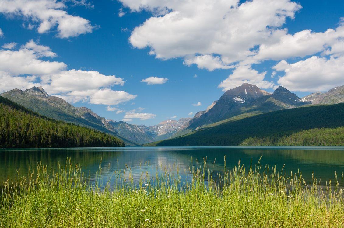 Фото бесплатно горы, лес, синий - на рабочий стол