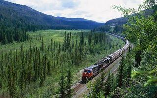 Бесплатные фото поезд,лес,деревья,листья,трава,горы,небо