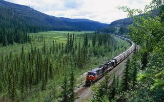 Photo free train, forest, trees