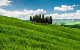 Фото бесплатно поле, зеленое, холмы