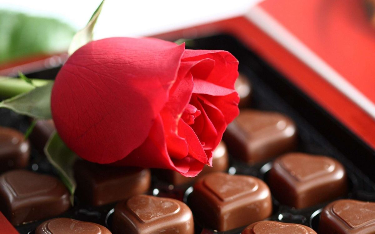 Фото бесплатно роза, конфеты, сердечки - на рабочий стол
