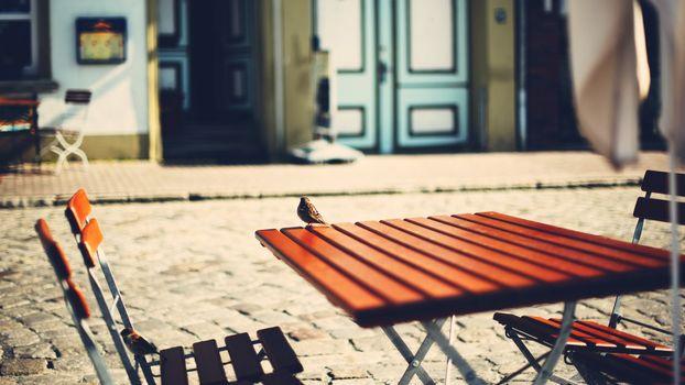 Фото бесплатно столик, лавочка, воробей
