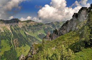Фото бесплатно вид сверху, деревья, швейцария