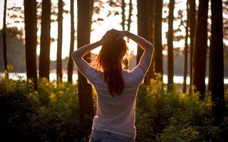 Бесплатные фото девушка, волосы, футболка, лес, деревья, водоем, солнце