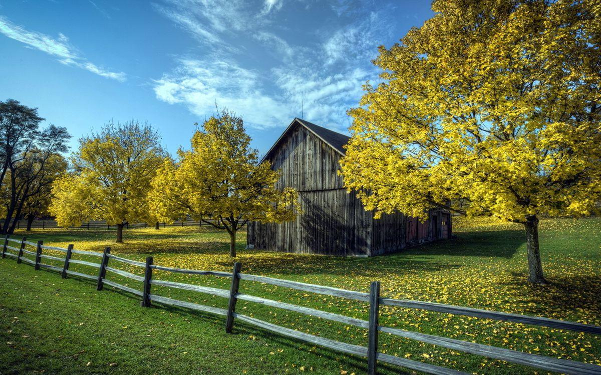 Фото бесплатно дом, сарай, дерево - на рабочий стол