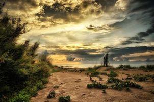 Бесплатные фото Италия,Адриатическое море,Венеция,небо,море,отлив,пляж