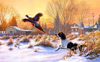 Бесплатные фото картина,щенок,пес,деревья,деревня,дома,кусты