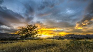Бесплатные фото небо,облака,тучи,дерево,горы,трава,поле