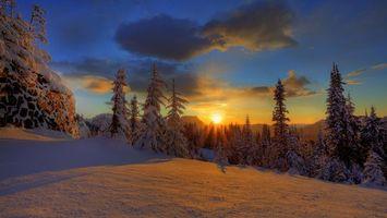 Фото бесплатно облака, лес, снег