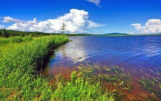 Бесплатные фото природа, озеро, трава, пейзажи
