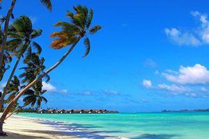 Фото бесплатно пляж, море, бунгало