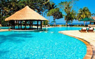Бесплатные фото тропики,море,курорт,бассейн,пальмы,разное