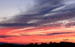 Бесплатные фото закат,небо,красное,облака,тучи,деревья,верхушки