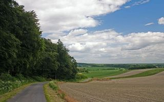 Photo free road, field, grass