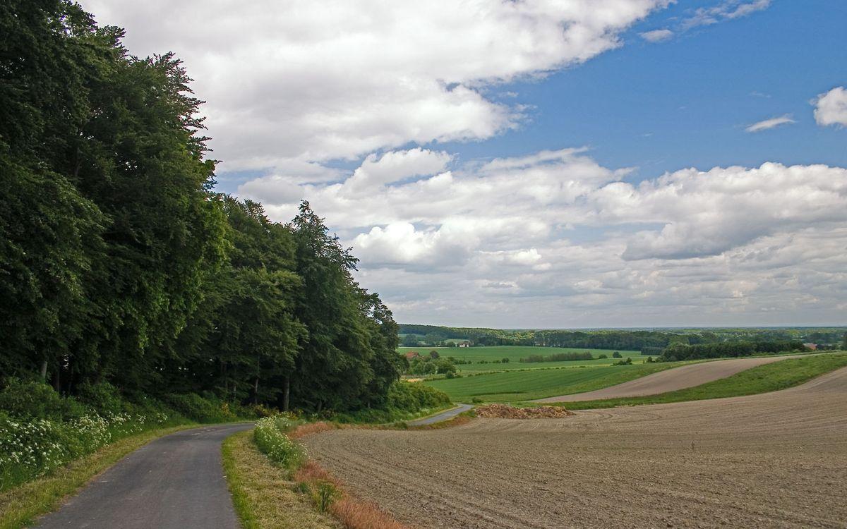 Фото бесплатно дорога, поле, трава, деревья, небо, облака, природа, природа - скачать на рабочий стол