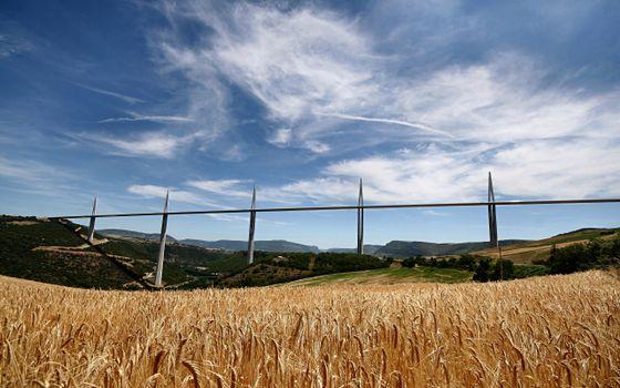 Фото бесплатно поле, пшеница, холмы