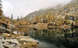 Бесплатные фото скалы,камни,вода,отражение,деревья,трава,природа
