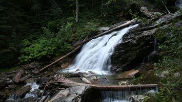Фото бесплатно водопад, кусты, камни