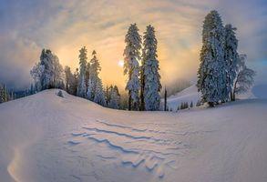 Бесплатные фото зима,закат,сугробы,холмы,деревья,пейзаж