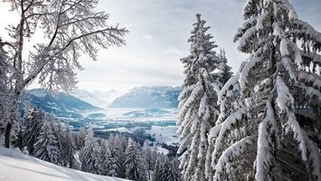 Заставки парк, зима, горы