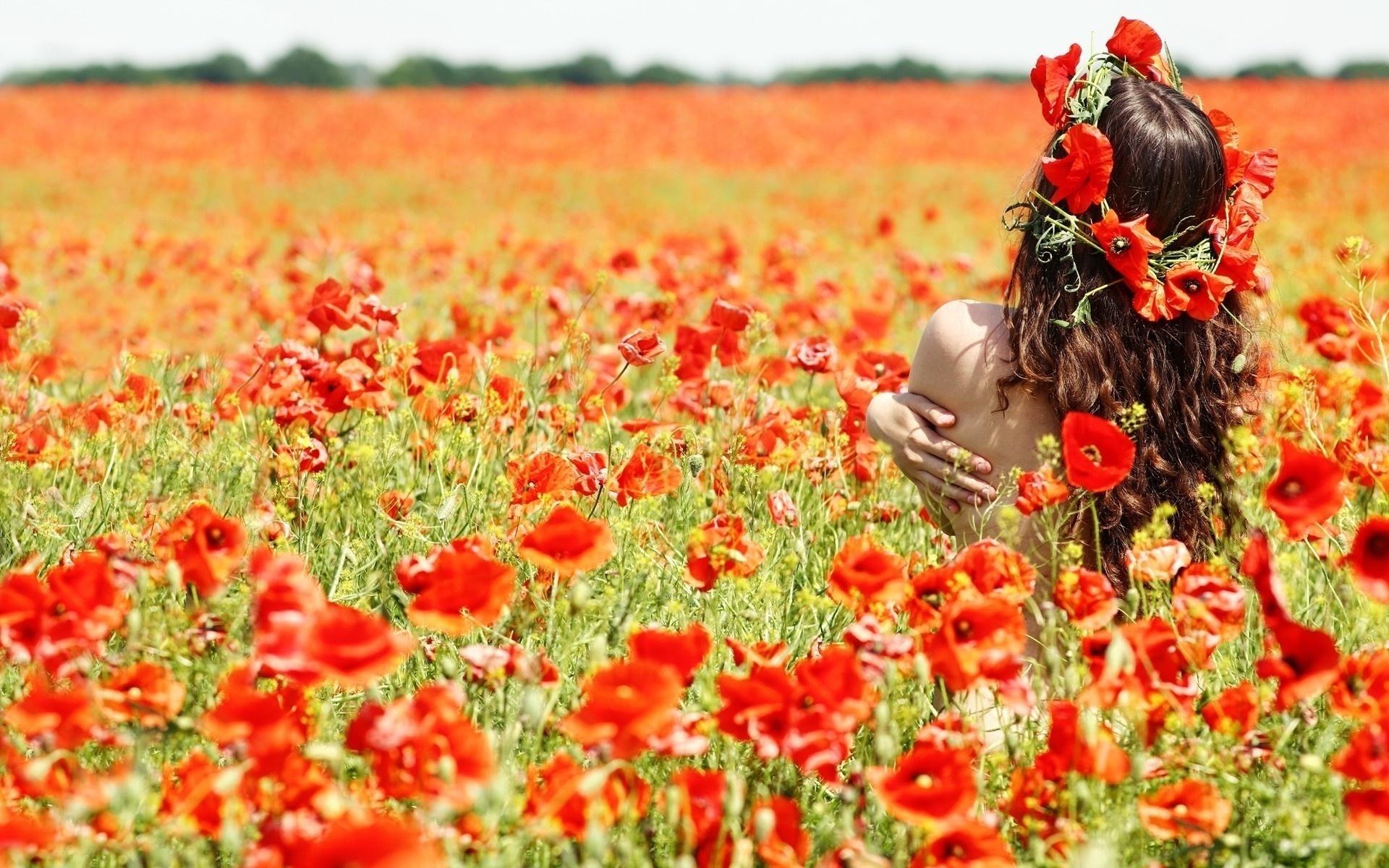 Девушка поле маки красные цветы
