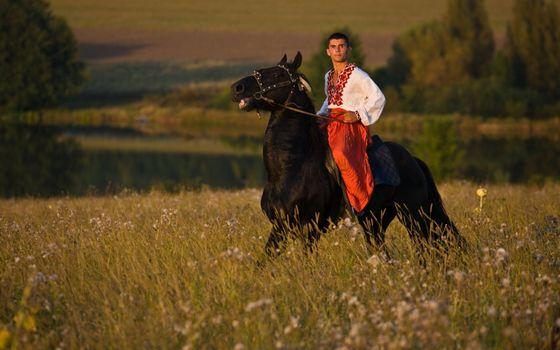 Photo free horse, black, rider