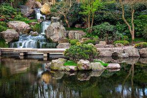 Бесплатные фото Лондон,Киото,Японский сад,Holland Park,Zen Garden,водоём,водопад