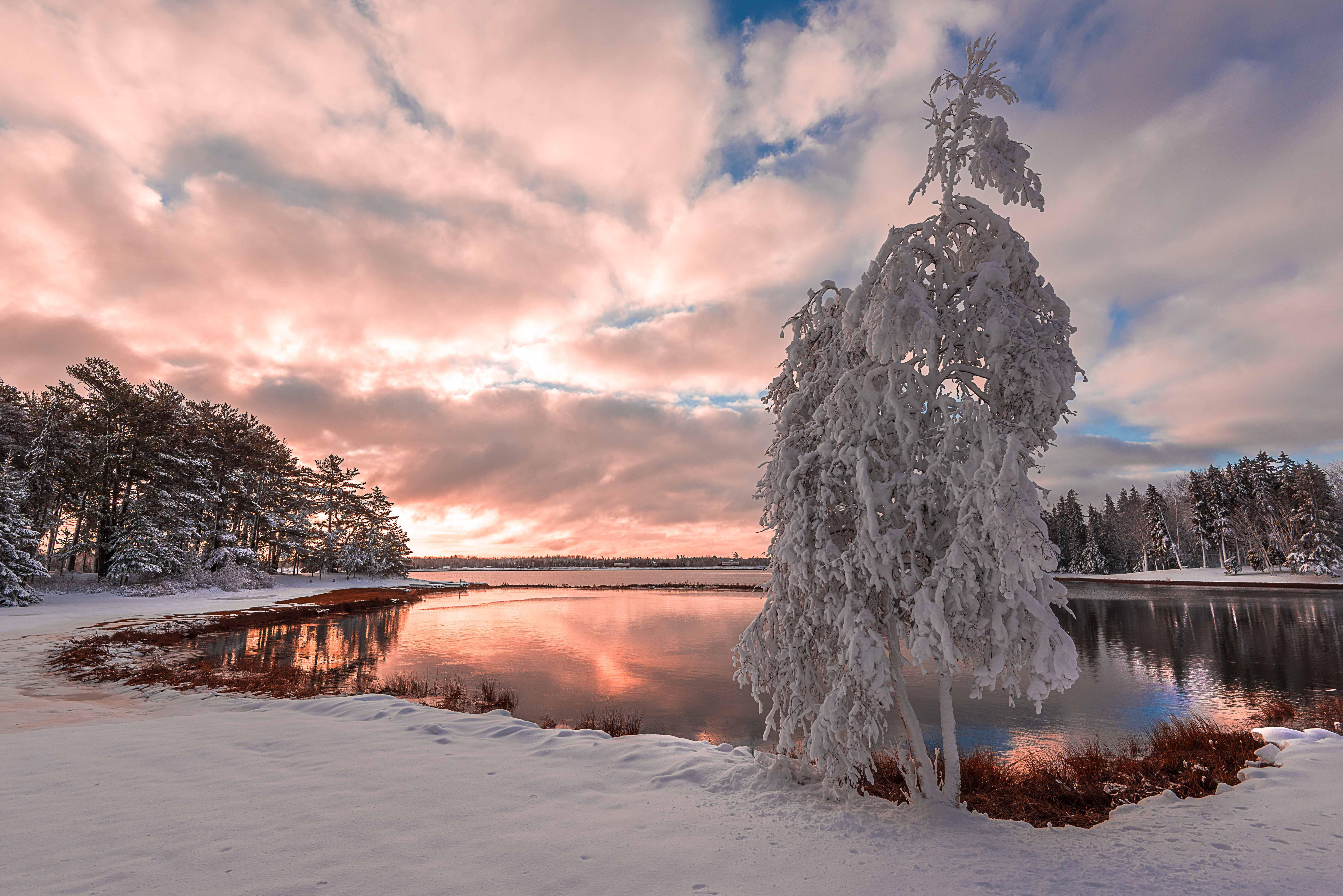 обои Первый снег в Нью-брунсвик, Канада, закат, зима картинки фото