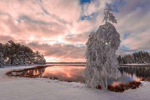 Заставки Первый снег в Нью-брунсвик, Канада, закат