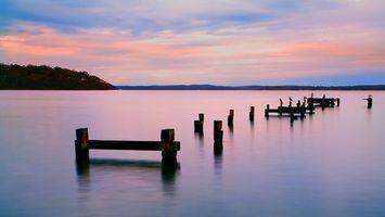Бесплатные фото разрушенный,мостик,столбы,птицы,чайки,озеро,берег