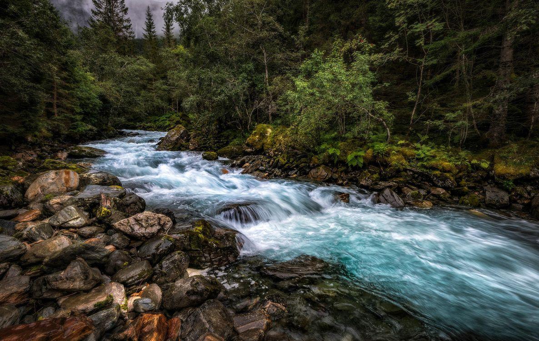 Фото бесплатно река, течение, лес - на рабочий стол