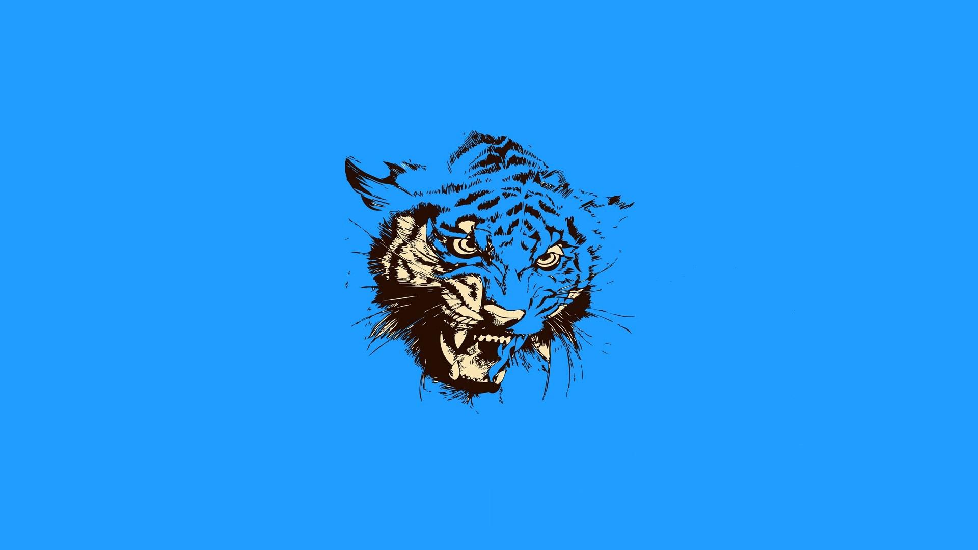 тигр, морда, оскал