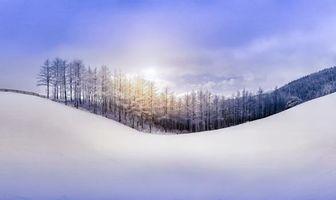 Бесплатные фото зима,снег,сугробы,горы,деревья,иней,небо