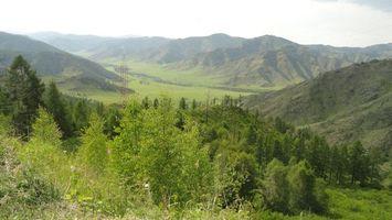 Бесплатные фото горы,трава,кусты,дерево,зеленый,линии,электропередачи
