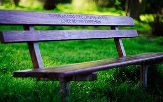Бесплатные фото скамейка,деревянная,парк,трава,газон,надпись,разное