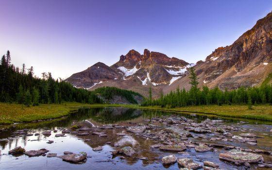 Фото бесплатно каменистая река, камни, лес