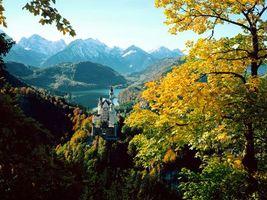 Фото бесплатно природа, дом, лес