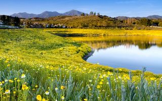 Бесплатные фото озеро, отражение, трава, цветы, горы, деревня, пейзажи