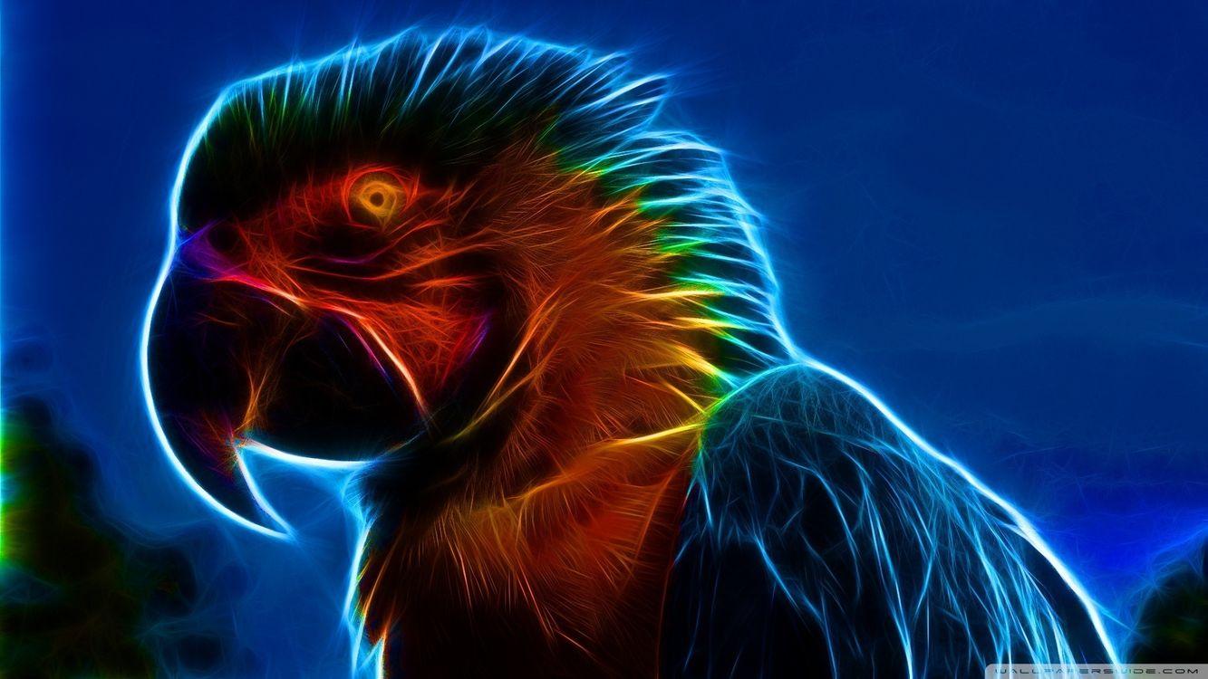 Фото бесплатно попугай, глаз, графика, перья, огонь, клюв, крылья, небо, рисунок, абстракции, птицы, разное, разное