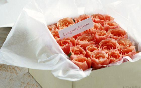 Бесплатные фото розы,букет,розовые,алые,маленькие,коробка,поздравление,карточка,слово,цветы