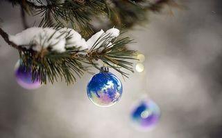 Фото бесплатно Шары на еловых ветках, снег, шар, ветки, отражение, блик