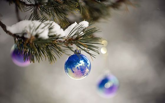 Photo free Balls on spruce branches, snow, ball