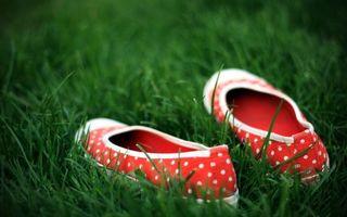Бесплатные фото тапки,балетки,туфли,горошек,ткань,материал,трава