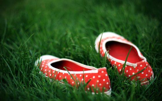 Бесплатные фото тапки,балетки,туфли,горошек,ткань,материал,трава,поле,луг,обувь,природа,разное
