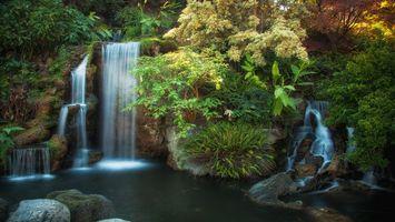 Бесплатные фото водопад, пруд, лес, трава, деревья, листья, природа
