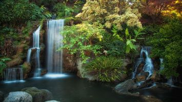 Бесплатные фото водопад,пруд,лес,трава,деревья,листья,природа