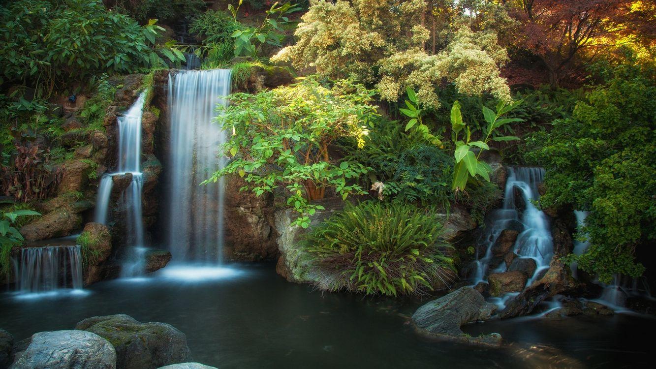 Фото бесплатно водопад, пруд, лес - на рабочий стол