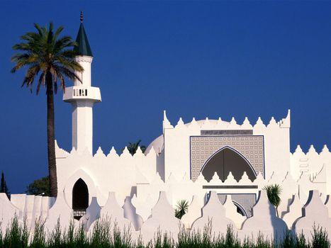 Бесплатные фото здания,старинные,белые,небо,голубое,пальма,город